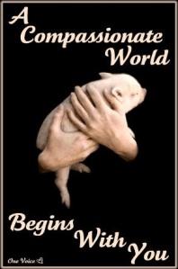 compassionateworld